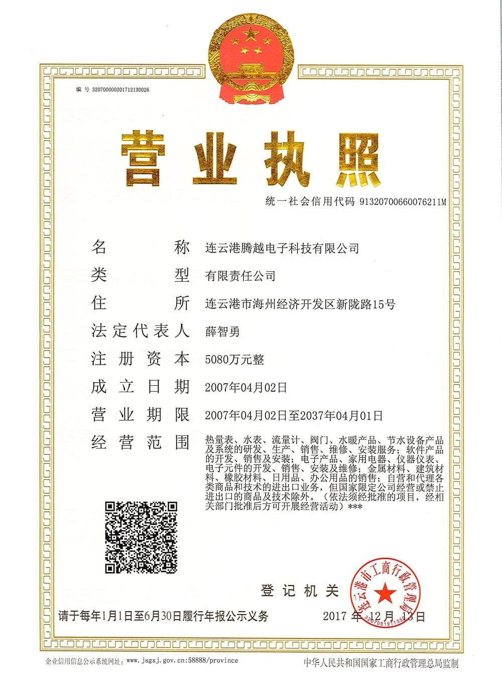 连云港腾越科技企业营业执照